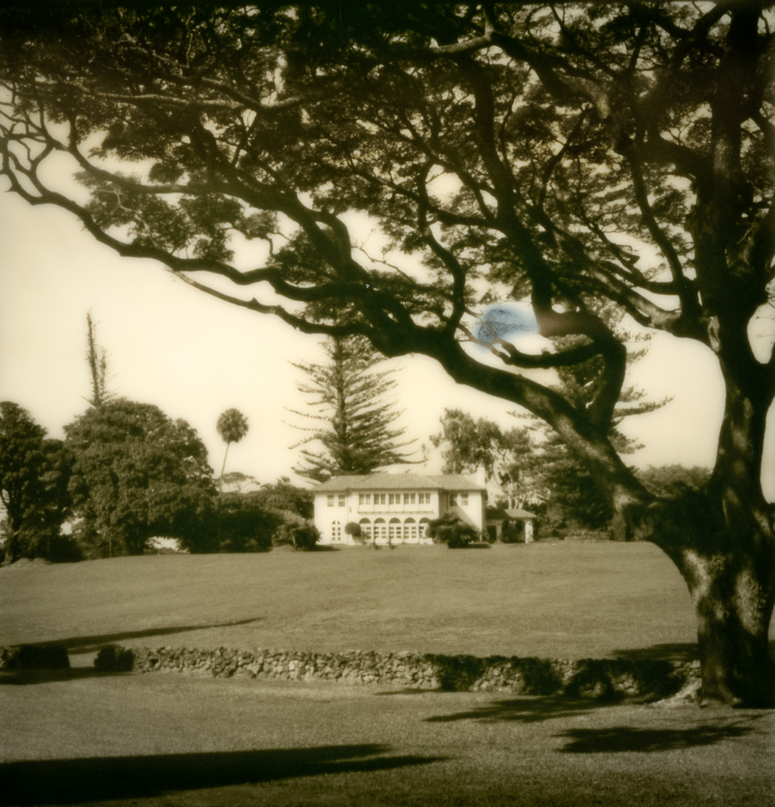 Thom Jackson Fine Art Photo Maui Polaroid-1